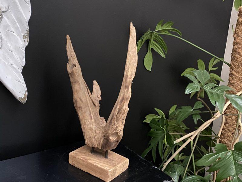 Racine en teck sculptée par le temps 06 Image