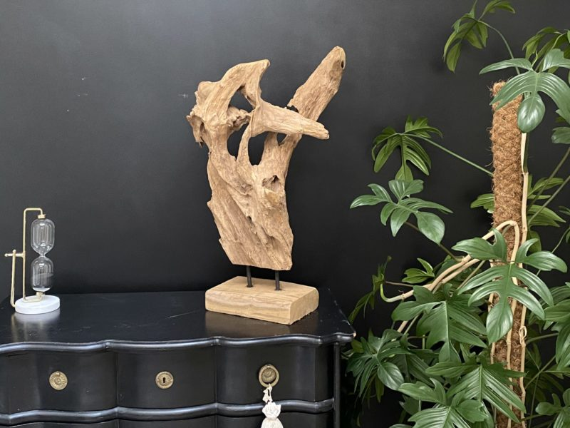 Racine en teck sculptée par le temps G04 Image
