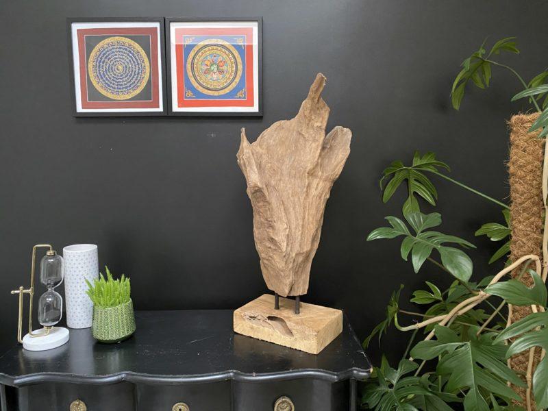 Racine en teck sculptée par le temps G03 Image