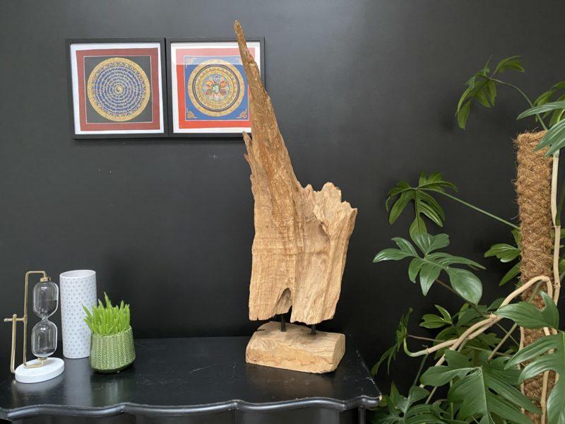 Racine en teck sculptée par le temps G02 Image