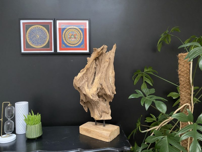 Racine en teck sculptée par le temps G01 Image